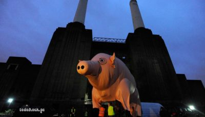 Cerdo Roger Waters